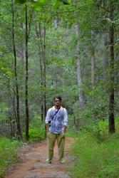 En medio del bosque de una de las montañitas, para arriba y para abajo.