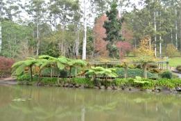 Jardín Botánico Tamborine