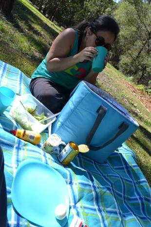 Nuestro pequeño picnic.